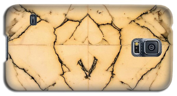 Marble Face Galaxy S5 Case