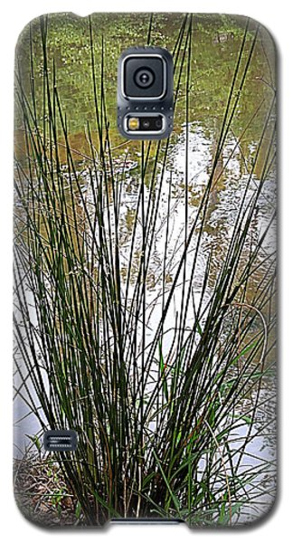 Galaxy S5 Case featuring the photograph Marsh Grass by Renee Trenholm