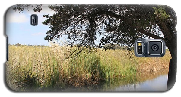 Galaxy S5 Case featuring the photograph Marsh Reflections by Jan Cipolla