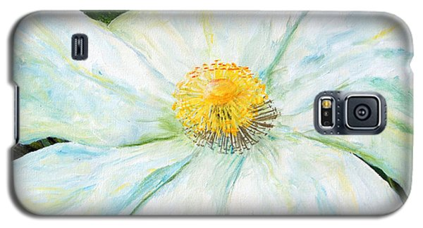Matilija Poppy Galaxy S5 Case by Terry Taylor