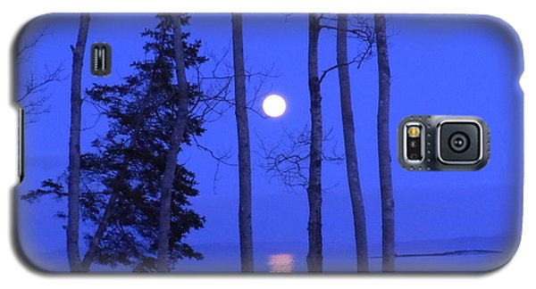 May Moon Through Birches Galaxy S5 Case by Francine Frank
