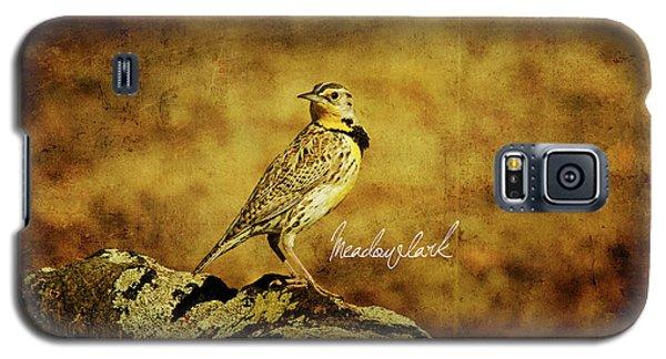 Meadowlark Galaxy S5 Case - Meadowlark by Lana Trussell