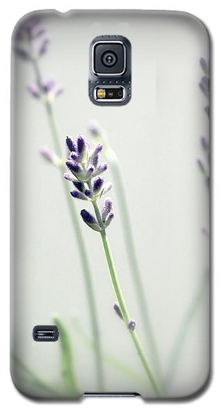 Galaxy S5 Case featuring the photograph Memories Of Provence by Brooke T Ryan