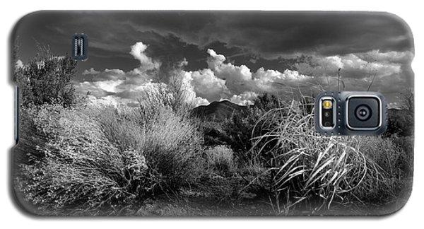 Mesa Dreams Galaxy S5 Case