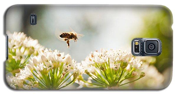 Mid-pollenation Galaxy S5 Case by Cheryl Baxter