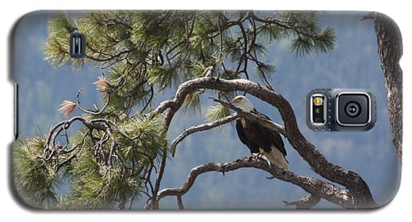 Galaxy S5 Case featuring the photograph Mighty Eagle by Cathie Douglas