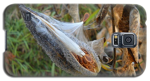 Milkweed - Spread Thy Seed Galaxy S5 Case by Kent Lorentzen