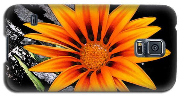 Miracle Of A Flower Galaxy S5 Case by Maciek Froncisz