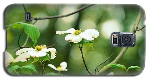 Miracle Of The Dogwood Galaxy S5 Case