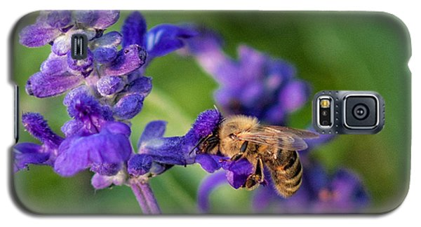 Galaxy S5 Case featuring the photograph Mmmm Honey by Tom Gort
