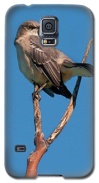 Mock One Galaxy S5 Case