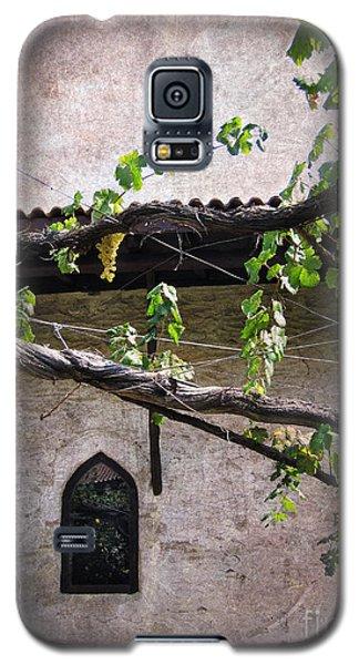Monastery Garden Galaxy S5 Case