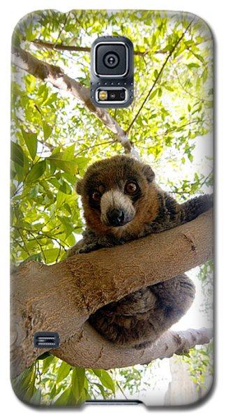 Mongoose Lemur Galaxy S5 Case