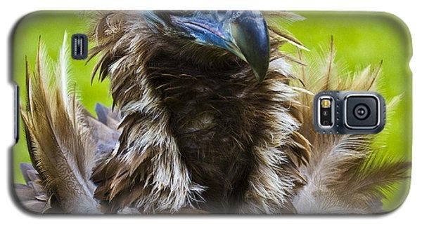 Monk Vulture 4 Galaxy S5 Case by Heiko Koehrer-Wagner