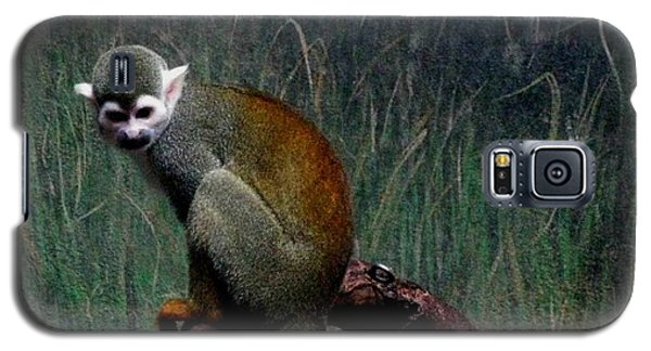 Galaxy S5 Case featuring the photograph Monkey by Maria Urso
