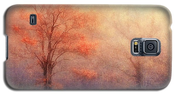 Moods Of Autumn Galaxy S5 Case by Darren Fisher