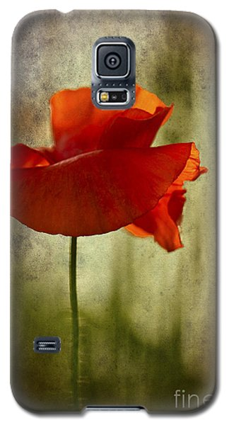 Galaxy S5 Case featuring the photograph Moody Poppy. by Clare Bambers - Bambers Images