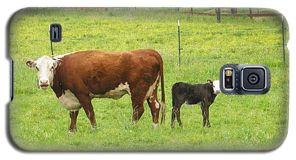 Galaxy S5 Case featuring the photograph Mooma And Calf by Wendy McKennon
