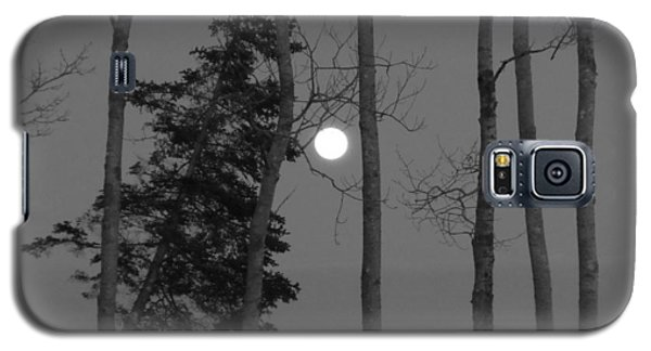 Galaxy S5 Case featuring the photograph Moon Birches Black And White by Francine Frank