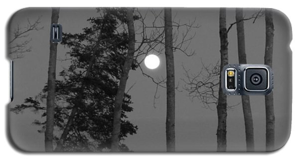 Moon Birches Black And White Galaxy S5 Case by Francine Frank