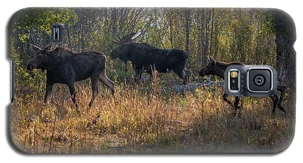 Moose Family Galaxy S5 Case