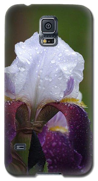 Morning Dew Iris Galaxy S5 Case by Rebecca Overton