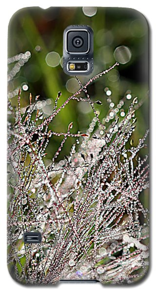 Galaxy S5 Case featuring the photograph Morning Dew by Lauren Radke