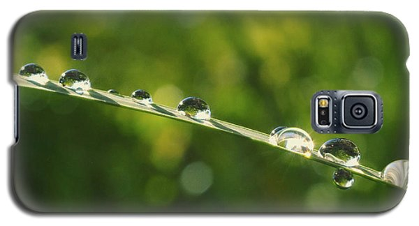 Galaxy S5 Case featuring the photograph Morning Dew by Rima Biswas