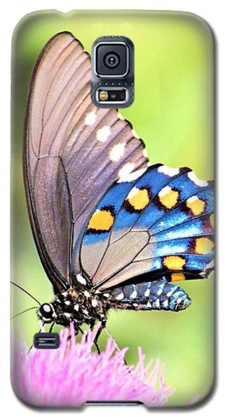 Morning Light Galaxy S5 Case by Elizabeth Budd
