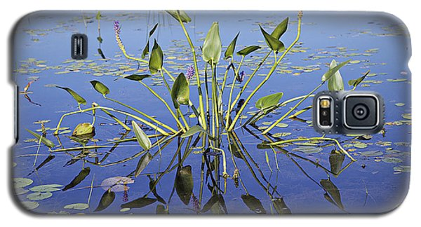 Galaxy S5 Case featuring the photograph Morning Reflection by Eunice Gibb