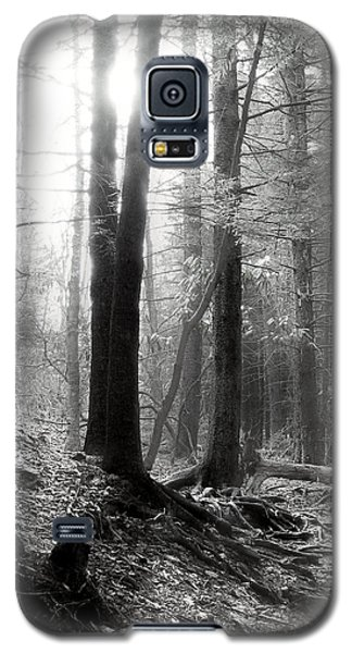 Galaxy S5 Case featuring the photograph Morning Sun by Mary Almond