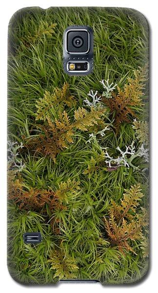 Moss And Lichen Galaxy S5 Case