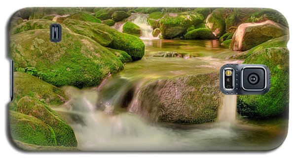 Galaxy S5 Case featuring the photograph Mossy Beauty by Cindy Haggerty