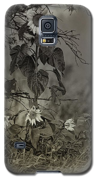 Mother And Child Reunion Galaxy S5 Case by Susan Capuano