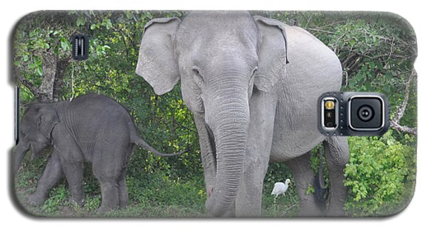 Mother Elephant And Baby Galaxy S5 Case