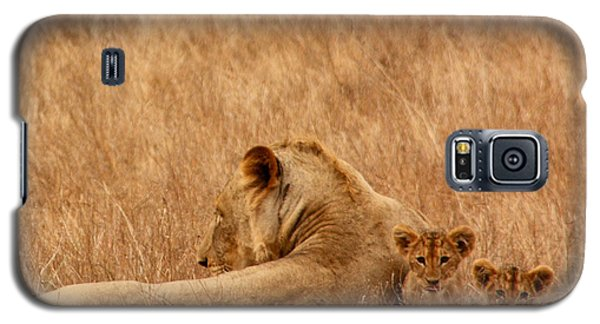 Mother Lion With Family Galaxy S5 Case