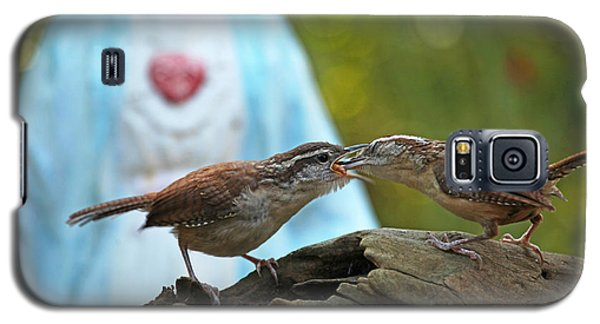 Galaxy S5 Case featuring the photograph Mother Wren Feeding Juvenile Wren by Luana K Perez