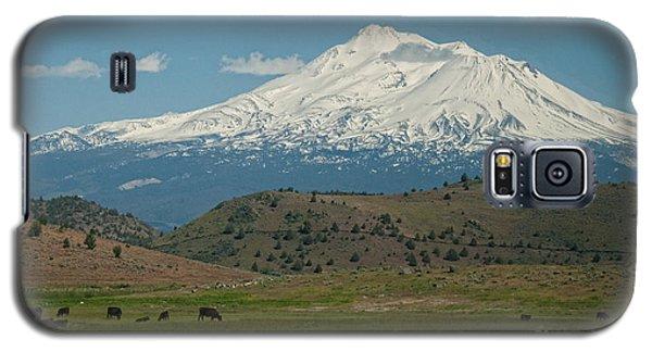 Mount Shasta Galaxy S5 Case by Carol Ailles