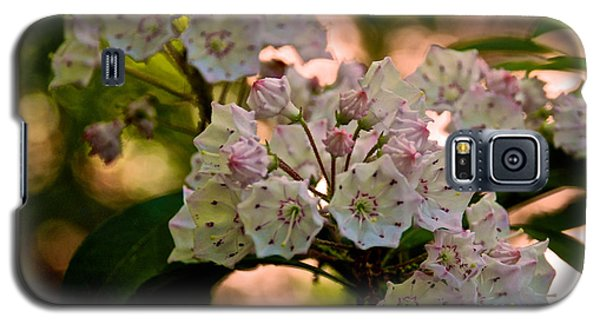 Mountain Laurel Flowers 2 Galaxy S5 Case