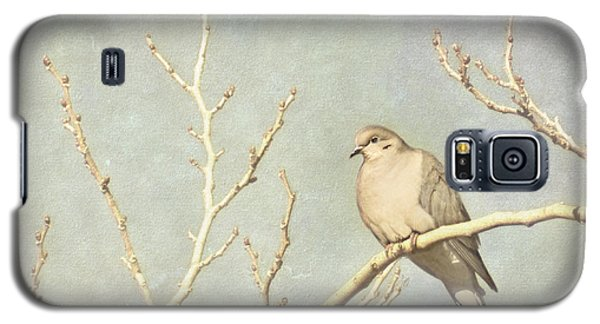 Mourning Dove In Winter Galaxy S5 Case