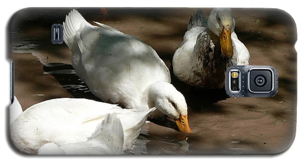 Galaxy S5 Case featuring the photograph Muddy Ducks by Laurel Best