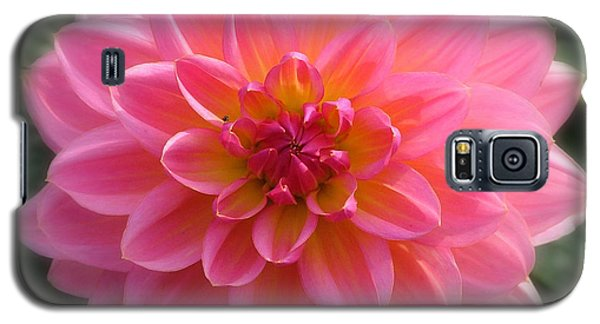 Galaxy S5 Case featuring the photograph Mum's The Word by Wendy McKennon