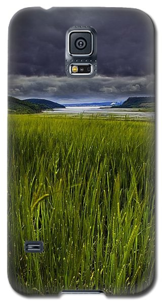 Munlochy Bay Galaxy S5 Case