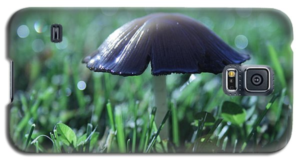 Mushroom In Morning Light Galaxy S5 Case