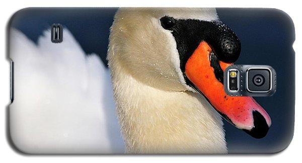 Mute Swan Galaxy S5 Case