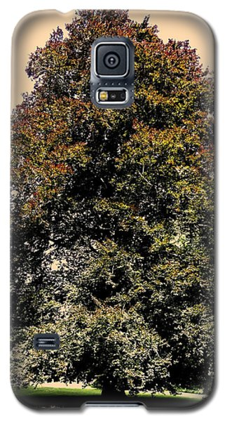 Galaxy S5 Case featuring the photograph My Friend The Tree by Juergen Weiss