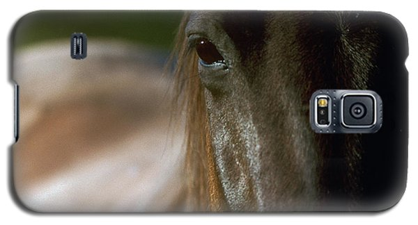 Galaxy S5 Case featuring the photograph My Neigh-bor's Horse by Doug Herr