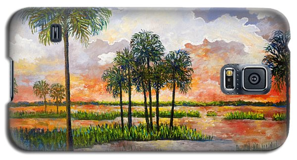 Galaxy S5 Case featuring the painting Myakka Sunset by Lou Ann Bagnall