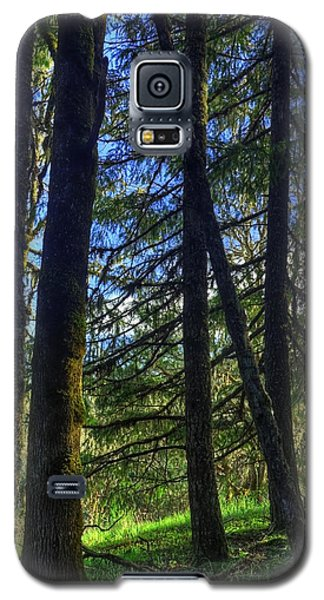 Galaxy S5 Case featuring the photograph Mystical Forest by Tyra  OBryant