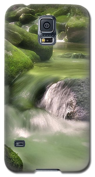 Natural Beauty Galaxy S5 Case by Cindy Haggerty